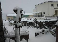 Vue de neige