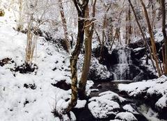 Neige Charbonnieres-les-Varennes 63410 Belle découverte pendant un Trail dominical