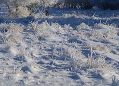 Nuages Saint-Chely-d'Apcher 48200 Paysage pétrifié par le givre et la neige
