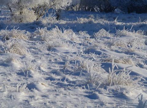 Paysage pétrifié par le givre et la neige