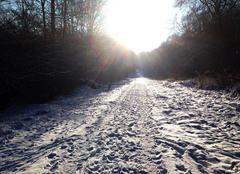 Neige Audun-le-Tiche 57390 Balade hivernale