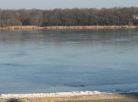 Le lac de saint quentin en yvelines