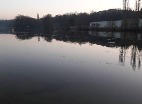 Glace sur la Marne