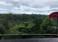 Pluie Bali Forêt tropicale
