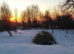 Ciel Harcy 08150 Soleil_levant_sur_le_parc