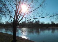 Belle journée hivernale  au lac Daumesnil (bois de Vincennes)