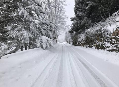 Promenade dans la neige ????