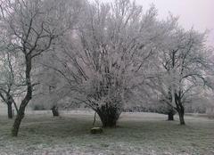 Neige Sagy 71580 Un hiver rigoureux soit le bienvenu