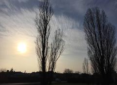 Soleil voilé cette après-midi