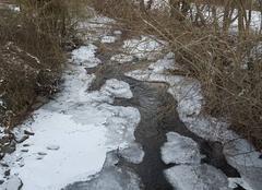 Froid Montcel 63460 -10 ce matin la morge gelée