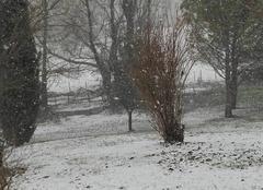 Il neige actuellement sur le teil en ardeche