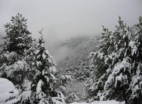 Neige à Dompnac