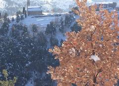 Neige Aiti 20244 Couleurs d'hiver corse