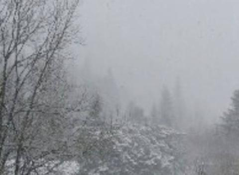 Neige au mont dore