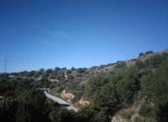 Ciel Málaga 29001 Yep