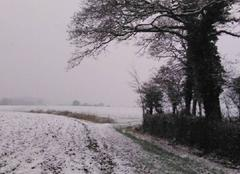 Neige Wirwignes 62240 Petite neige