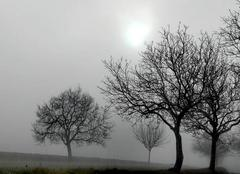 Brouillard Saint-Martin-de-Riberac 24600 Brumes perigourdines