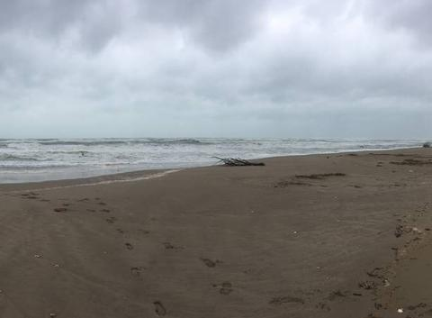 Grosse vagues en Méditerranée