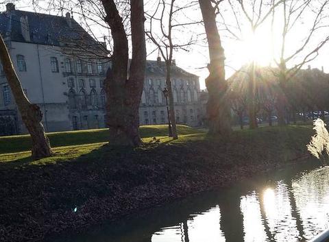Soleil de fin d'hiver