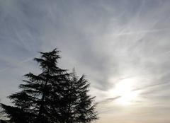 Ciel de St Lézer de ce Jeudi matin 16 Février 2017 à 10 h 10.
