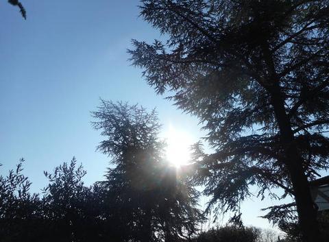 Bleu   ciel.....pour   la    journée.....