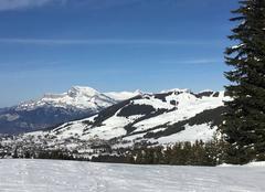Montagnes sous ciel bleu