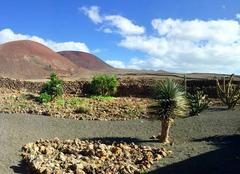 Magique Fuerteventura