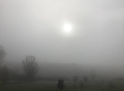 10h00 l'hiver est bien là : brouillard et froid