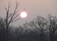 Ciel Mauron 56430 Levé de soleil en Broceliande