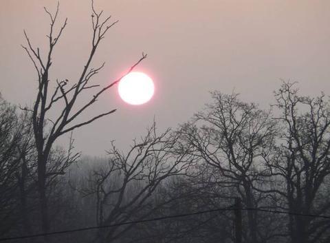 Levé de soleil en Broceliande