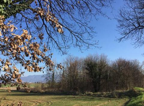 Ciel printanier en campagne moursoise cet après-midi