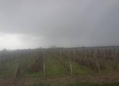Pluie Saint-Seurin-de-Cadourne 33180 Rain