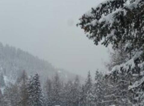 Belle neige!