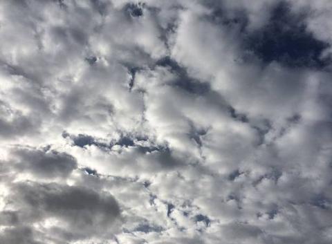 Des moutons dans le ciel