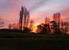 Ciel Saint-Andre-de-Seignanx 40390 Le soleil se lève dans les landes
