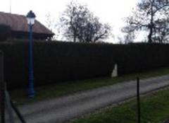 Nuages Juvaincourt 88500 Pluvieux