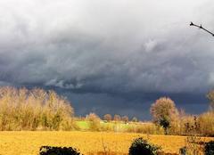 Orage Messimy-sur-Saone 01480 L orage menace, accompagné d'un vent de tempête