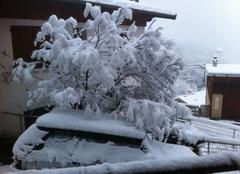 Abondantes chutes de neige