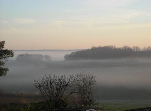 Brume matinale dans le duracquois
