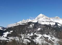 Climat Cohennoz 73400 Mont charvin