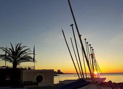 L'agréable quiétude de la base nautique de Ste Maxime, au petit matin