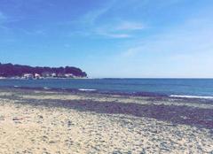 La plage des Sablettes