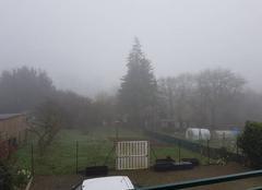 Brouillard Guingamp 22200 Jeudi brumeux !!