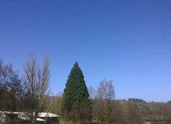 Journée ensoleillée en Alsace.