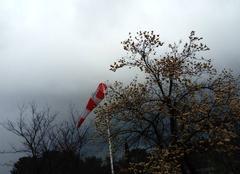 Brume, pluie et vent faible
