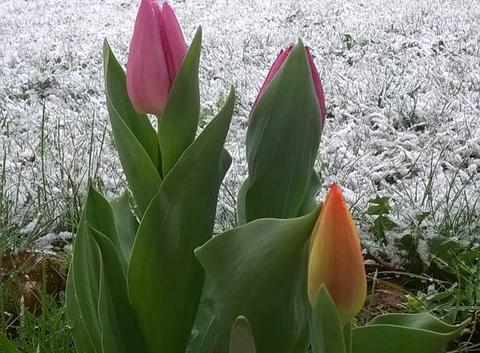 Retour de l'hiver en Corrèze