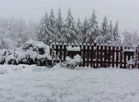 Neige de printemps.