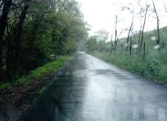 Grisaille sur la route