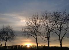Ciel Domfessel 67430 Le soleil se couche.
