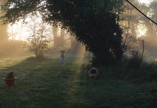 Ciel Bonnemaison 14260 Petite brume matinale